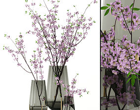 Cherry blossom in Echasse Vases 3D model
