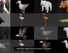 3D Asset pack rigged low poly collection