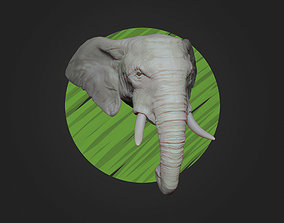 African Elephant Head - Low 3D printable model