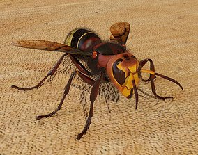 Realistic hornet rigged and animated for 3ds Max animated