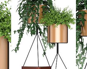 Plants collection 190 3D