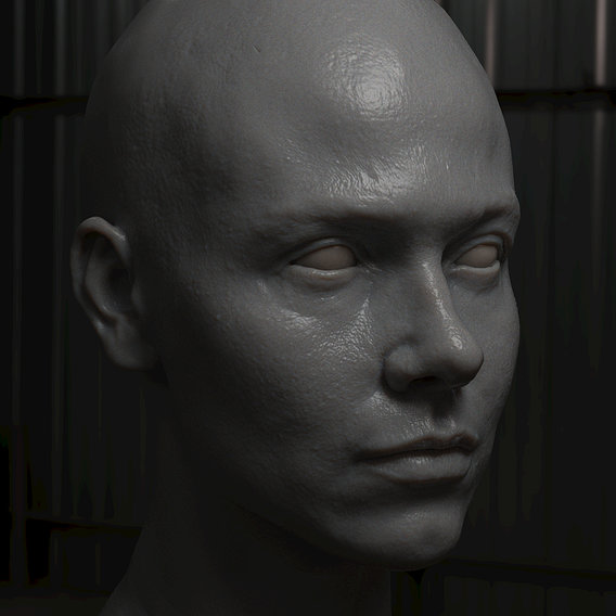 Young female face scupting with high detail zbrush, obj file with low poly