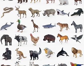 3D asset Ultimate Animal Collection Rigged Fur