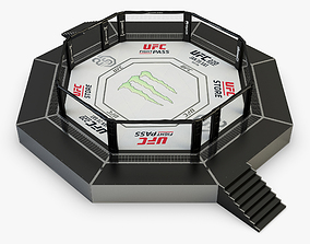 Octagon UFC 3D model