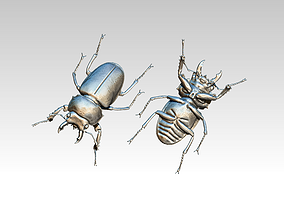 Stag Beetle Bug Fly 3D printable model
