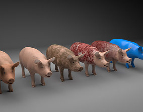 Pig model with 6 different textures 3D asset realtime