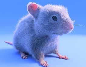 3D asset Mouse- realistic style - White fur - rigged