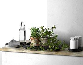 3D model Bowls Napkin Bottles and Pots with Plants