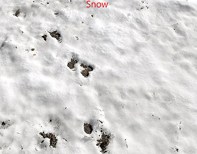 3D model Snow ground Scan