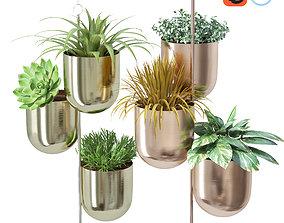 3D Plant in metal hanging pots pot-plant