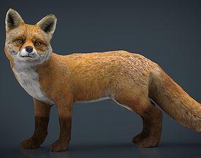 Realistic Fox 3D model