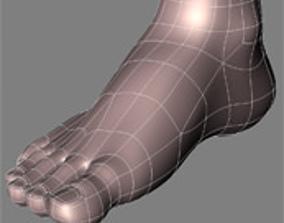 3D human feet