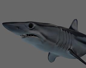 3D asset Shortfin Mako Shark