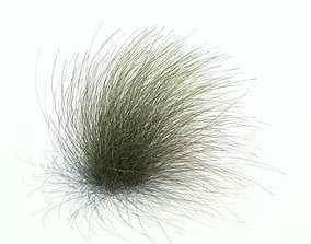 3D model Long Grass