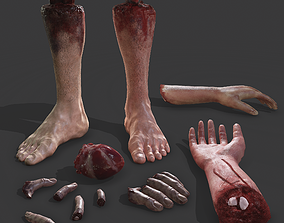 3D model Severed Body Parts Pack