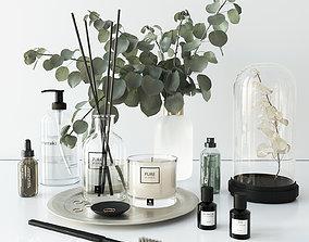 Bathroom set with eucalyptus 3D model