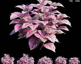 3D Pink Polka Dot Plant
