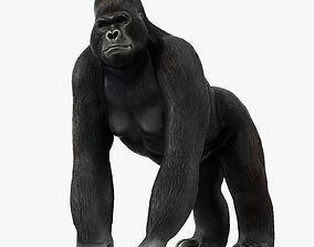 3D model Figurine Gorilla