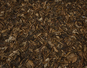 3D PBR Scanned Leafy Ground with Traces of Snow