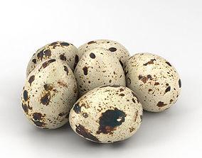 Quail Eggs 3D
