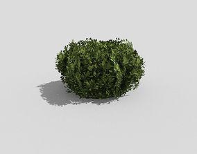 low poly shrub 3D model game-ready