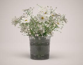 Daisies plant 3D model