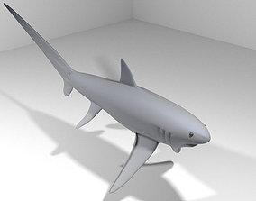 3D model Shark - Fox