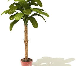 3D Green Tropic Potted Plant