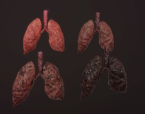 lung of smoking animation respiratory organ 3D model