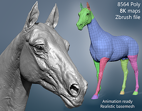 Realistic Horse Basemesh 3D
