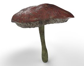 Tiny Mushroom 3D asset