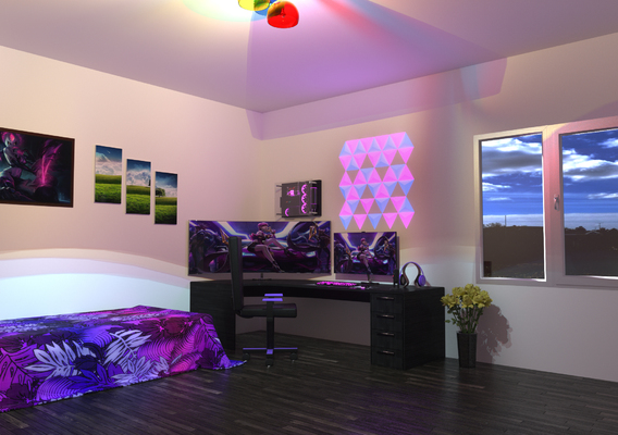 Gaming Room.