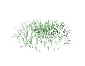 Grass 001 3D model
