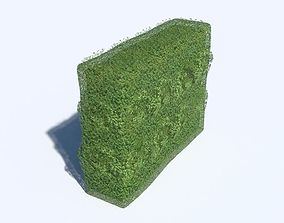 3D asset Hedge