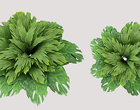3D bush leaves