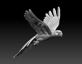 parrot 3D print model