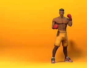 Stylized Boxer 3D asset