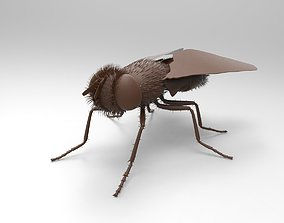 Fly-Fly 3D print model