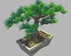 3D Bonsai - Flowerpot 39