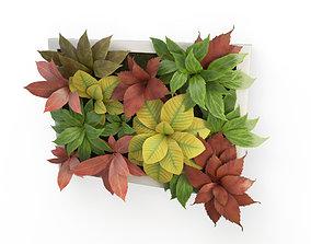 3D Plants Frame 50 X 40 Cms