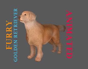 3D model animated realistic furry Golden Retriever