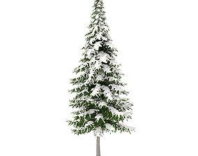 Fir Tree with Snow 10m 3D