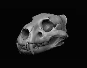 Lion Skull 3D print animal