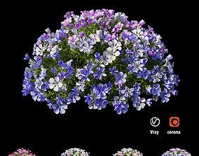 Plant flower set 11 3D