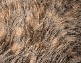 Fur Ornatrix Redshift 3dsmax maya redshift