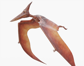 Pterodactyl Rigged 3D asset