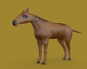cinema4d Free Horse Model 3D