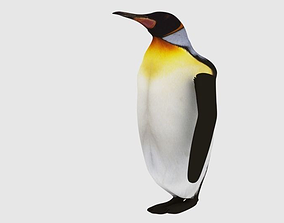 3D asset Animated and Rigged Penguin