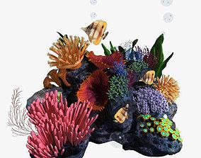 Coral marine 3D