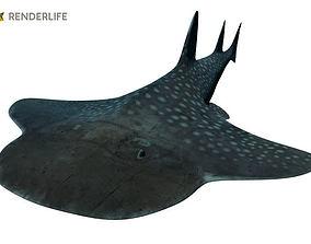 Angel Shark with animation 3D model